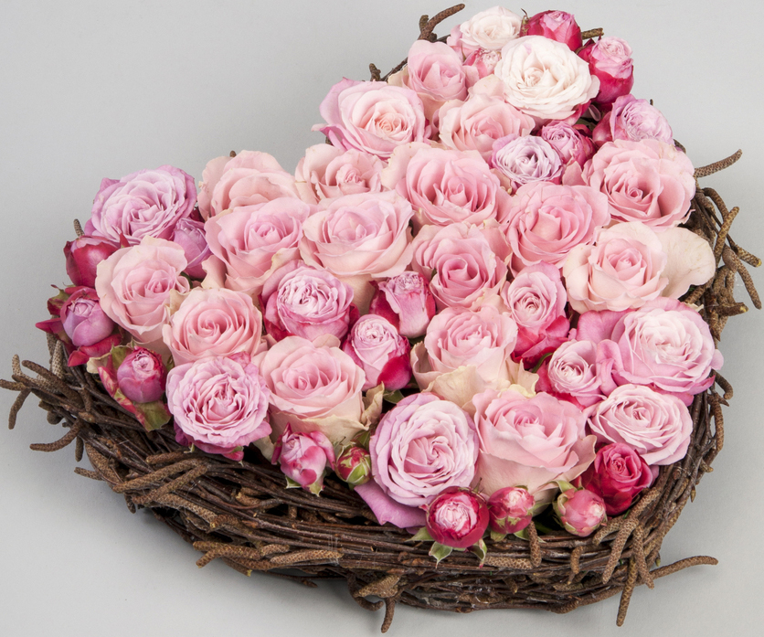Rose passioni joyflor for Rose color rosa antico